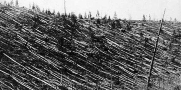 Blick auf die 1908 zerstörte sibirische Waldregion Tunguska. Copyright: Public Domain