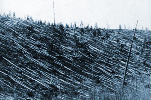 GreWi-Dossier: 110 Jahre Tunguska-Katastrophe