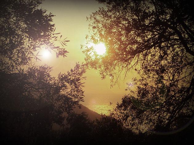 Symbolbild: Künstlerische Darstellung eines doppelten Sonnenuntergangs auf einem fernen Exoplaneten (Illu.). Copyright: grewi.de (mit Material von pixabay.com)