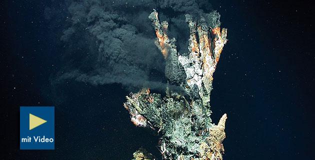 Symbolbild: Ein sog. Schwarzer Raucher, eine Tiefseequelle in 3.300 Meter Wassertiefe. Copyright: MARUM − Zentrum für Marine Umweltwissenschaften, Universität Bremen / (via WikimediaCommons), CC-BY 4.0