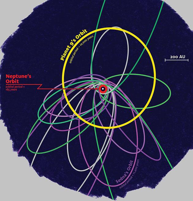 Diese Illustration zeigt die Umlaufbahnen ferner Objekte im Kuiper-Gürtel und die von Planet Nine. Lilafarbene Umlaufbahnen stellen jene Objekte dar, deren Orbit von der Gravitation des vermuteten Planeten beeinflusst und im sog. Clustering gemeinsam abgelenkt werden. Die grünen Bahnen zeigen hingegen Objekte, die dem Gravitationseinfluss des Planeten Neptun unterliegen und eine deutlich weitere Verteilung aufweisen (Illu.). Copyright: James Tuttle Keane/Caltech