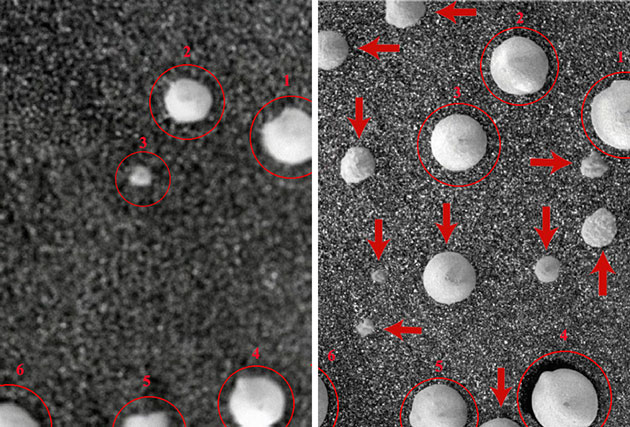 """Von besonderem Interesse ist der Vergleich dieser beiden Opportunity-Aufnahmen des gleichen Bodenausschnitts zunächst am Missionstag (Sol) 1145 (l.) und dann erneut drei Tage später (Sol 1148; r.): Zeigen diese Aufnahmen sozusagen vor der Kameralinse innerhalb von drei Tagen gewachsene Pilze oder Flechten? Die mit roten Kreisen und den Ziffern 1-6 markierten """"Kugeln"""" sind bereits auf der ersten Aufnahme (Sol 1145) zu sehen, scheinen aber bis zur zweiten Aufnahme (Sol 1148) selbst etwas ausgedehnt und leicht verändert. Hinzu sind auf der Aufnahme vom dritten Tag zuvor nicht sichtbare """"Kugeln"""" bzw. Teilstücke davon zu sehen, die nun aus dem Boden herausragen. Handelt es sich hierbei um aus dem Boden gewachsene biologische Strukturen oder hat hier nur der Wind zuvor noch verdeckte Kugelstrukturen freigeweht? Copyright/Quelle: NASA / Journal of Astrobiology and Space Science Reviews, 1, 40--81, 2019; Joseph et al."""