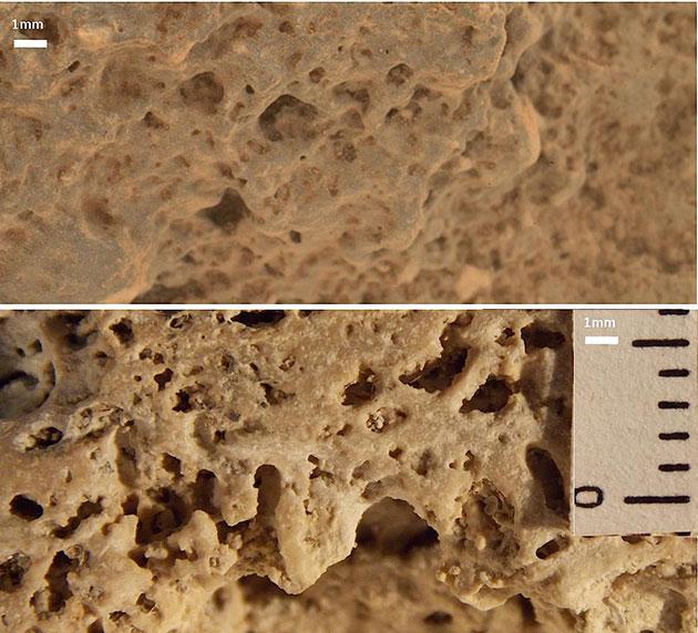 """Ein Vergleich der Mikroskopaufnahmen von Strukturen auf dem Mars, aufgenommen von """"Curiosity"""" an dessen 506. Missionstag auf dem Mars (Sol) mit den Details irdischer biogener Stromatolithen aus dem Lagia Slagada in Brasilien (u.) zeigen ebenso offenkundige wie erstaunliche Übereinstimmungen. Copyright/Quelle: NASA/JPL / Journal of Astrobiology and Space Science Reviews, 1, 40--81, 2019; Joseph et al."""