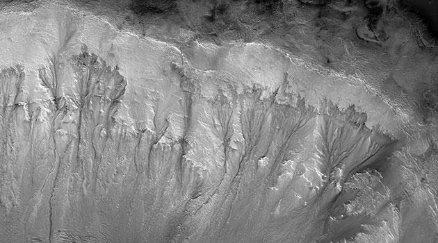 Eine neue Studie sieht in diesen sog. Recurrent Slope Linae (RSL) an Kraterwänden auf dem Mars Rinnsale von austretendem Tiefengrundwasser. Copyright: NASA/JPL/University of Arizona