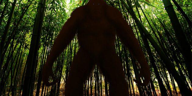Mysteriöser Menschenaffe auf Java (Illu.). Copyright/Quelle: prehistoric-wildlife.com
