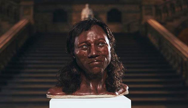 Die neue, auf den Ergebnissen der aktuellen DNA-Analyse basierende Gesichtsrekonstruktion des sog. Cheddar-Mannes. Copyright: Tom Barnes/Channel 4