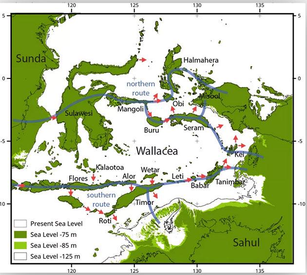 Die modellierten Routen nach Sahul. Copyright: Michael Bird et al.