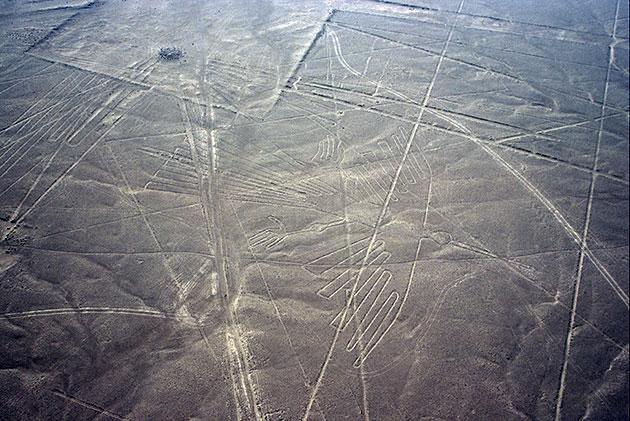 Diese, traditionell als Kondor gedeutete Geoglyphe konnten die Ornithologen keiner konkreten Vogelart zuordnen. Copyright: Copyright: Herb/Tofal für grenzwissenschaft-aktuell.de