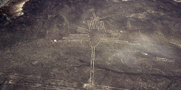 """Die bislang als """"Kolibri"""" interpretierte Nazca-Geoglyphe zeigt laut japanischen Forschern konkret einen sog. Eremiten und damit eine in Nazca nicht heimische, sondern subtropische Kolibri-Art. Copyright: Herb/Tofal für grenzwissenschaft-aktuell.de"""