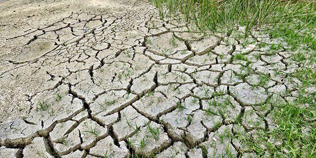 Symbolbild: Klimawandel Copyright: jodylehigh (via Pixabay.com) / Pixabay License