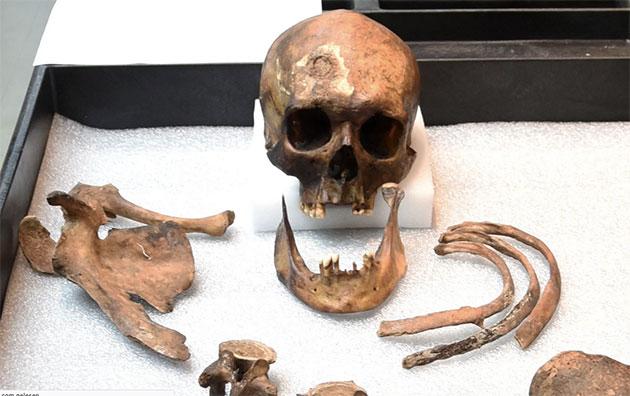 """JB 55: Rätselhafter """"Vampir von Connecticut"""" nach 200 Jahren identifiziert"""