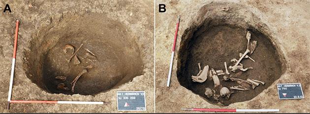 Blick auf unterschiedliche Fundschichten in der Grabgrube von Hermanov Vinograd. Copyright/Quelle: D. Los / Pinhasi, Novak et al., 2019