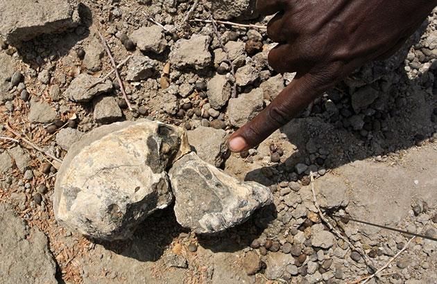 So wurde das Fossil 2016 in Miro Dora im Bezirk Mille des Äthiopischen Regionalstaats Afar gefunden. Copyright: Yohannes Haile-Selassie, Cleveland Museum of Natural History