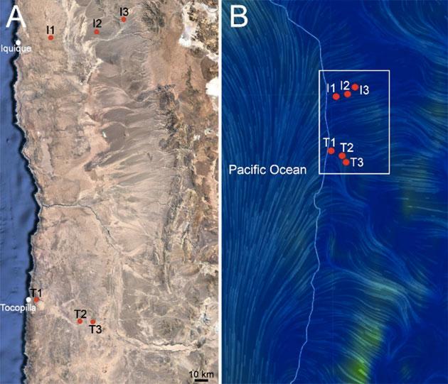 Die linke Karte zeigt die Orte der Probenentnahme in den Regionen Iquique (I1-3) und Tocopilla (T1-3). Die rechte Karte zeigt die Windrichtungen und -stärken. Copyright/Quelle: Azu-Bustos et al, Scientific Reports 22.08.2019