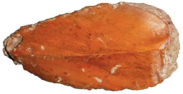 Eine sechs Zentimeter lange Klinge aus Idaho. Copyright/Quelle: L. Davis et al. Science, Vol. 365, 891 (2019)