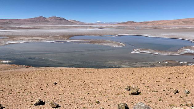 """Der Quisquiro-Salzsee in Südamerikas Altiplano. Die mit Salzseen gefüllte Quisquiro-Salzwüste des südamerikanischen Altiplano ist eine Landschaft, von der Wissenschaftler annehmen, dass sie einst ähnlich auch im Gale-Krater existiert hat, den derzeit der NASA-Rover """"Curiosity"""" erforscht. Copyright: Maksym Bocharov Vollständiges Bild und Bildunterschrift"""