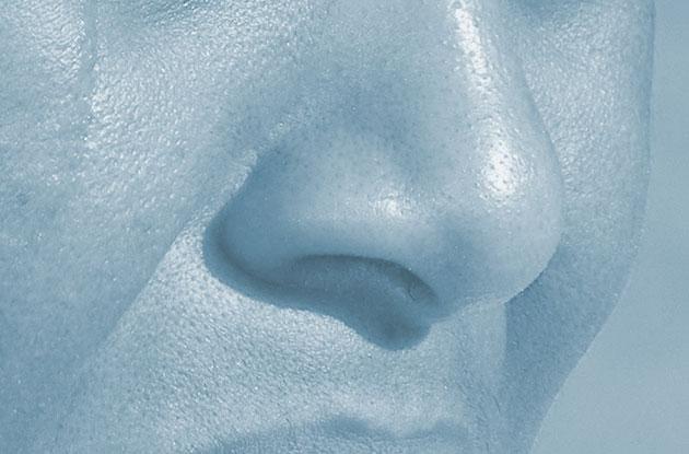 Studie zeigt: Auch Menschen könn(t)en wahrscheinlich Krankheitskeime riechen
