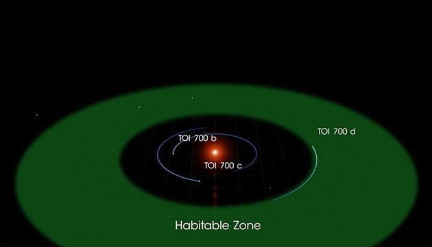 """Orbitaldigramm der drei um den Stern """"TOI 700"""" bekannten Planeten und seiner habitablen, also potentiell lebensfreundlichen Zone (Illu.). Copyright: NASA's Goddard Space Flight Center"""