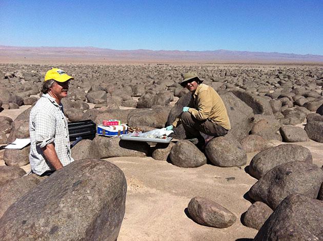 Feldforschung in der Atacama-Wüste in Chile. Hier herrschen marsähnliche Bedingungen. Copyright:TU Berlin_Research Group Astrobiology