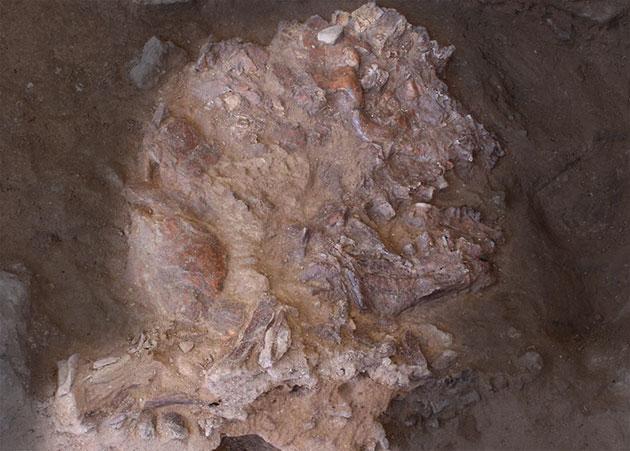 """Der 2018-19 in der Shanidar-Höhle entdeckte und von Sedimenten flachgedrückte und von Felsstürzen zertrümmerte Neandertaler-Schädel des Individuums """"Shandihar Z"""". (Konturen hervorgehoben durch GreWi) Copyright/Quelle: E. Pommery et al., Antiquity 2020 / University of Cambrige"""