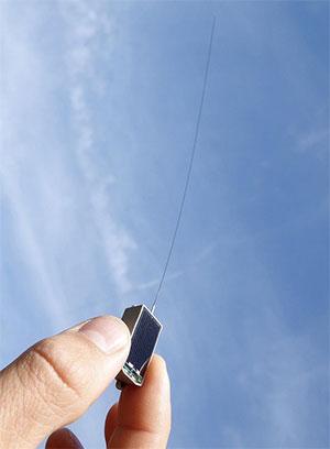 Die eigens für Icarus entwickelten Sender wiegen nur fünf Gramm. Sie messen die Position und verschiedene Körperdaten des Tieres und leiten die ihre Messdaten per Funk weiter. Copyright: MPI f. Ornithologie/ MaxCine