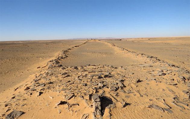 Blick entlang eines Mustatils in der saudi-arabischen Nefud-Wüste. Der Forscher am gegenüberliegenden Ende erlaubt in etwa einen Größenvergleich der Anlage. Copyright: Huw Groucutt