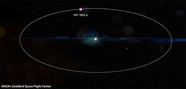 Grafische Darstellung der Umlaufbahn des neuentdeckten Planeten WD 1856 + 534b, der einen Weißen Zwerg umkreist. Copyright/Quelle: John Munson/Cornell University