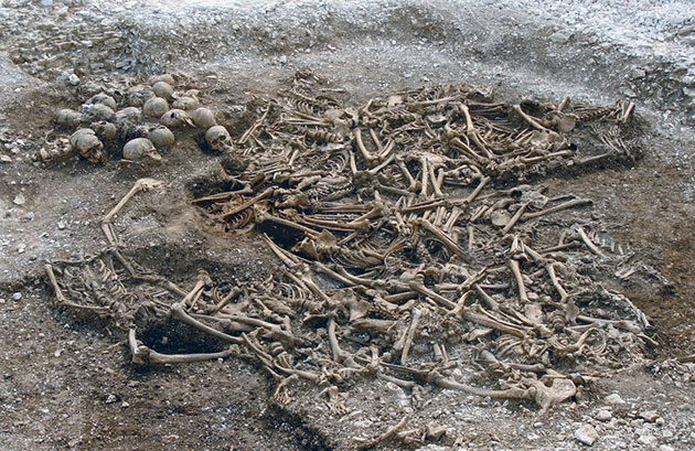 Auch die sterblichen Überreste von 50 geköpften Wikingern aus einem Massengrab im südenglischen Dorset wurden für die aktuelle Studie analysiert. Copyright: Dorset County Council/Oxford Archaeology