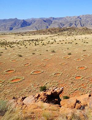 Blick auf einige wenige der mysteriösen Feenkreise in Namibia. Copyright: Dr. Stephan Getzin/UFZ