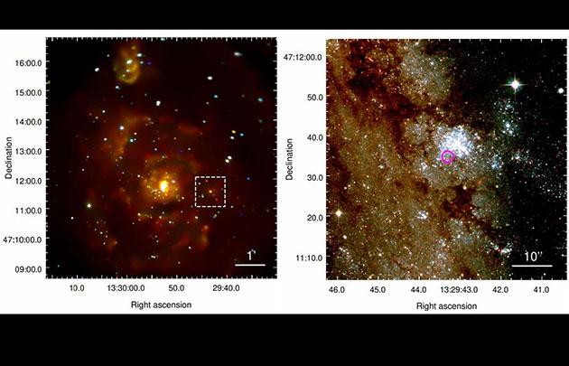 """Chandra/ACIS-S-Aufnahme der Whirlpool Galaxie (M51) in einer Falschfarbendarstellung und der markierten Röntgenquelle """"M 51-ULS"""" (l.). Der pinkfarbene Kreis in der HAST-Ausschnittsvergrößerung (r.) markiert die Position des Signals am Rande eines jungen Sternhaufens. (Klicken Sie auf die Bildmitte, um zu einer vergrößerten Darstellung zu gelangen.) Copyright/Quelle: Stefano et al. / arXiv:2009.08987"""