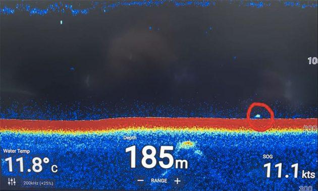 Schon ein zweites Mal binnen eines Monats zeigte das Sonar am 11. Oktober 2020 ein rätselhaftes großes Echo am Grund des Loch Ness. Copyright: Ronald Mackenzie/Cruise Loch Ness
