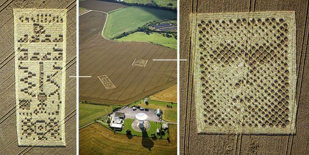 Luftbilder der beiden Kornkreise neben dem Radioobservatorium von Arecibo in Hampshire. Copyright: Steve Alexander, www.temporarytemples.co.uk