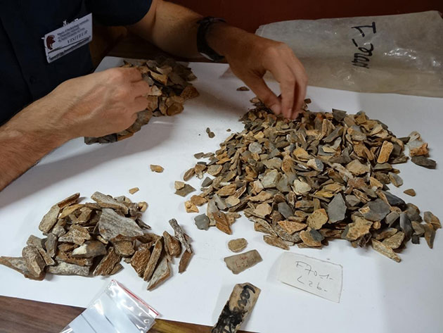 Neuauswertung der Funde von La Ferrassie. Copyright/Quelle: Antoine Balzeau - CNRS/MNHN