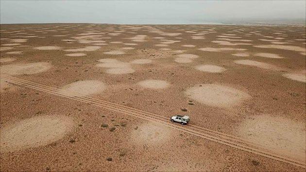 Feenkreise im südlichen Afrika aus der Luft Copyright/Quelle: UHH/Jürgens