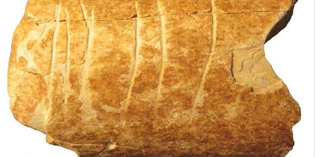 Gravuren in einem Knochen halten Forscher für die bislang ältesten bekannten, von Menschen erstellten Symbole. Copyright: Credit Marion Prévost