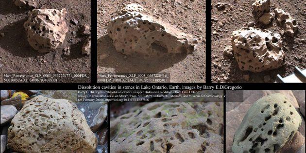 """Visueller Vergleich einiger löchriger Gesteine am Landeort des neuen NASA-Marsrovers """"Perseverance"""" (oben) mit Steinen aus dem Lake Ontario (u.). Copyright: NASA/JPL-Caltech / Barry E. DiGregorio"""