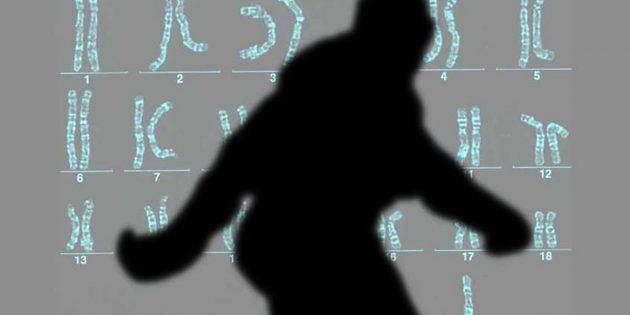 Symbolbild: Bigfoot-DNA (Illu.). Copyright: grenzwissenschaft-aktuell.de