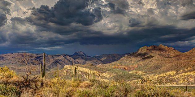 Symbolbild: Wüstenlandschaft in New Mexico. Copyright: Pexels (via Pixabay.com) / Pixabay License