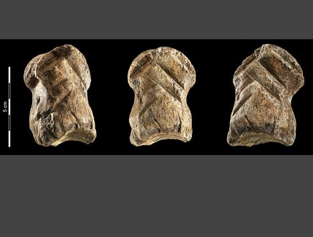 Ein von Neandertalern verzierter Riesenhirschknochen aus der Einhornhöhle. Copyright/Quelle: V. Minkus, NLD
