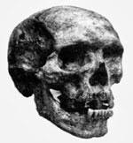 Der Schädel von Zanas Sohn Khwit. Quelle: Dr. Igor Burtsev