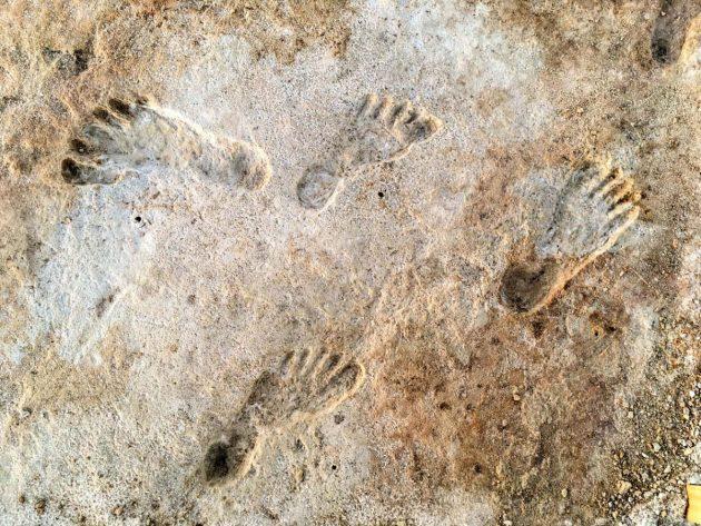 Die Fußabdrücke von White Sands sind das bislang älteste Zeugnis menschlicher Aktivität auf den amerikanischen Kontinenten. Quelle: Cornell University