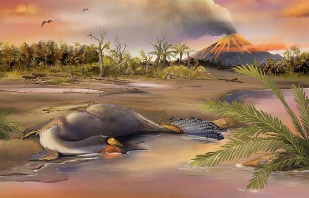 Rekonstruktion des am Ufer von Seen in der Liaoning-Provinz verstorbenen und in der Folge versteinerten Caudipteryx (Illu.). Copyright: Zheng Qiuyang